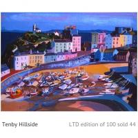 Tenby Hillside